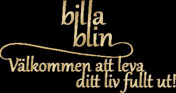 billablin.se